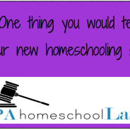 The One Thing I'd Tell My New Homeschooling Self